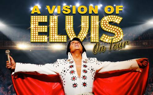 A Vision of Elvis Artwork